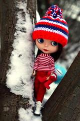 Sadie of the snow