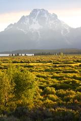 Grand Teton (Kennedy Lugo) Tags: sunset mountain green nature beautiful field dusk horizon grand teton grandtetonnationalpark