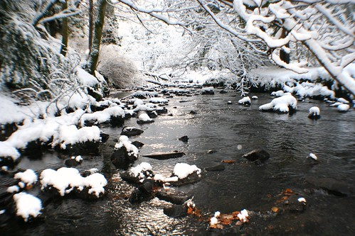 Scottish Stream in Winter