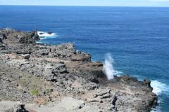 IMG_8606 (avsfan1321) Tags: ocean usa hawaii unitedstates unitedstatesofamerica maui blowhole nakalele nakaleleblowhole nakalelepoint