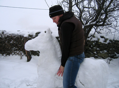 Snow horse collapso!