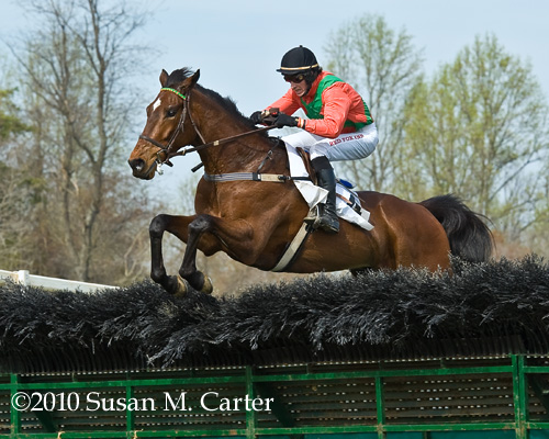 Fantastic Foe, steeplechase horse racing