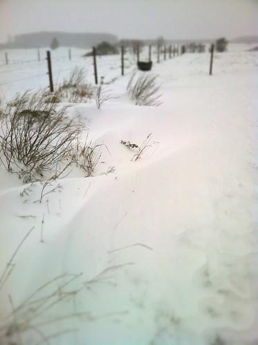 101205-Snow Dunes
