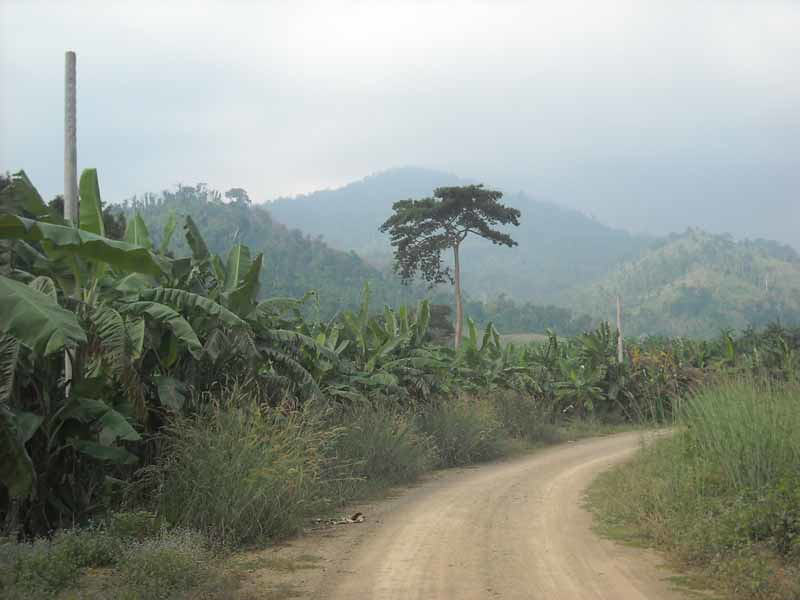 Rural scenery, Pailin, Cambodia