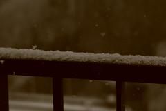 IMG_6330 (pellegrini_paris20) Tags: snowflake schnee white snow paris canon eos flake neige weiss blanc ville flocons flocon itsnows flocke flocken schneeflocke schneit flocondeneige souslaneige esschneit floconsdeneige ilneige 1000d