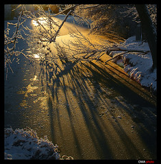 Magic gold light in frozen river. / Mgica luz dorada en el ro helado. (OMA photo) Tags: light espaa luz rio river gold frozen spain magic carrion palencia dorada magica