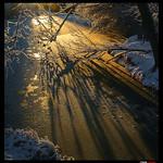 Magic gold light in frozen river. / Mágica luz dorada en el río helado.