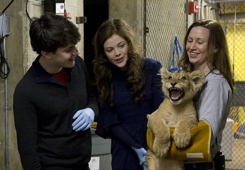 The Chronicles of Narnia: The Voyage of the Dawn Treader Stars  Named a Lion Cub at Smithsonian's National Zoo