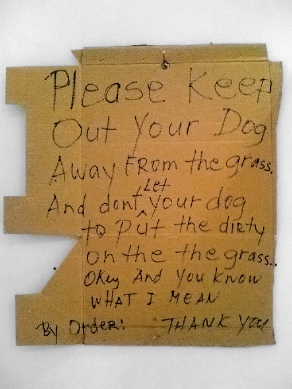 Don't Let Your Dog To Put the Dirty on the Grass