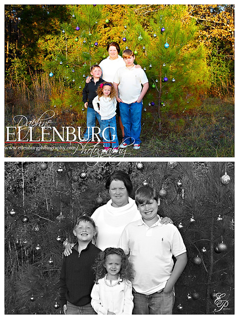Blog 112010 Ellenburg 1