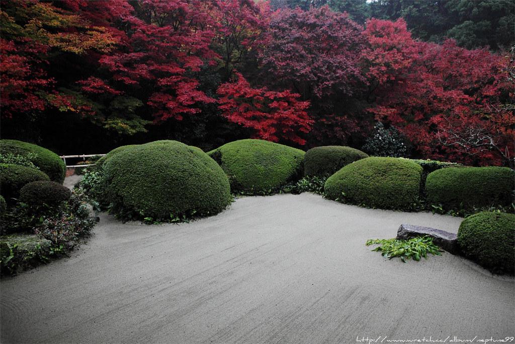 京阪散策 洛北篇
