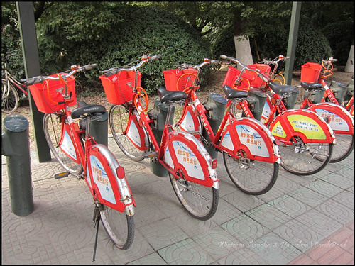 2010-12-08 Shanghai 056P15