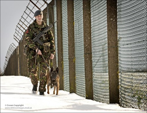 Royal Air Force Dog Handler Patrols RAF Coningsby