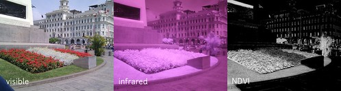 Plaza San Martin, visible-infrared-NDVI