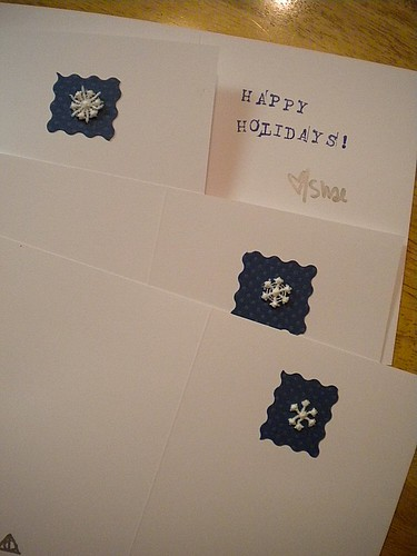 My 2010 Holiday Cards
