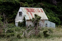 Old house, Makara, Wellington, New Zealand (brian nz) Tags: old newzealand house abandoned farmhouse rural rust ruins cottage wellington derelict corrugatediron makara oldandbeautiful oncewashome