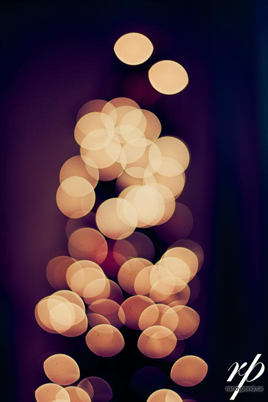 ~ 360/365 Christmas Lights ~