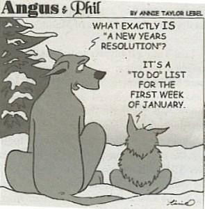 resolutions-comic-295x300