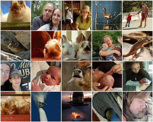 2010 Favorites