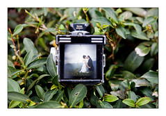 Rolleiflex and green tea... (Nicophotography) Tags: wedding mountain green tlr rollei rolleiflex french photography photographer tea outdoor marriage taipei gown mariage greentea nico whitegown nicophotography weddingphotographertaiwan outdoorweddingtaiwan