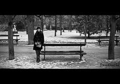 En el parque... (dayangchi) Tags: parque portrait bw paris byn mujer retrato nieve banco una teresa guapa reflexión luxemburgo pensativa ltytr dayangchi mygearandme