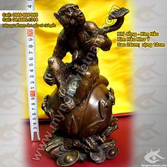kim-hau-tuong