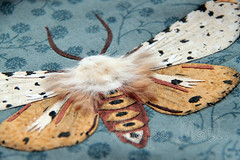 Moth appliqe 2 (ShapeMoth) Tags: brown gray moth fabric saltmarshmoth rawedgeapplique shapemoth