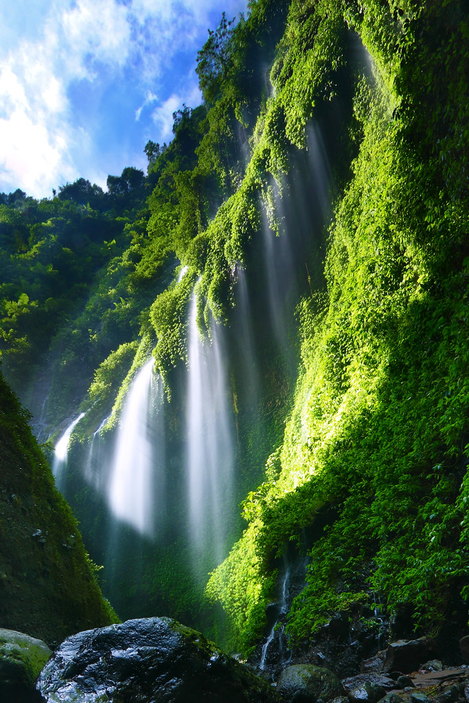 Madakaripura Waterfall Indonesia