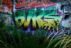 BVRS Graffiti - San Francisco, CA (EndlessCanvas.com) Tags: sf graffiti bayarea 2010 jaut bvrs damnbeavers bvrsgraffiti