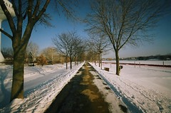 Road To A White Paradise (Jamhorner) Tags: park trees winter snow dusk parkway pathway winterwonderland expiredfilm nikonf4