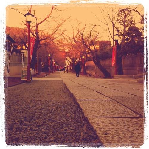 法華経寺の参道を歩く