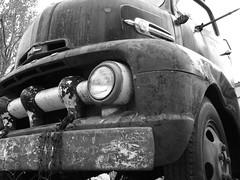 Black brute (David Sebben) Tags: black ford abandoned truck illinois coe brute 1952 hauler cabover
