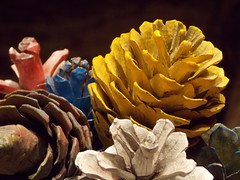 -Still Life ( ) Tags: colors yellow painted pinecones