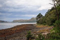 _MG_5009 (Flyfifer Photography) Tags: greatbritain highland invernessshire knoydart places scotland unitedkingdom