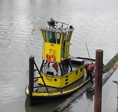 The (teeny) tugboat Rossco