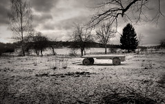 The cow field (with no cows) (Mack2) Tags: autumn trees winter blackandwhite bw snow cold tree fall field sepia vinter wideangle uppsala vehicle 1020mm sn hst trd bandwagon hage flogsta sigma1020mm eriksberg svartvitt ekeby vagn vidvinkel kallt sonya100