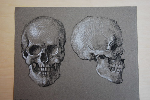 skull - charcoal