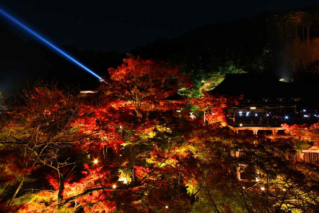 Kiyomizu-dera Illumination 2010  (6)