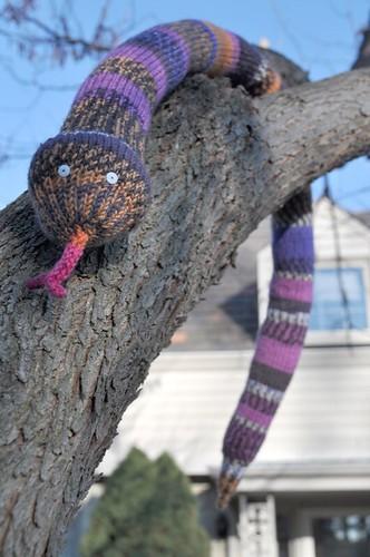 SnakeTree.jpg