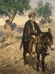 Arab man from Bethlehem on his donkey