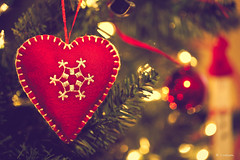 """The true spirit of Christmas is love"" (Rebecca812) Tags: snowflake christmas winter red tree green love home beautiful yellow season happy lights holidays warm pretty heart bokeh traditional seasonal stock joy decoration twinkle ornament giving stitches safe merry tradition welcoming makemerry canon5dmarkii rebecca812 gettyholidays2010 ihfholiday"