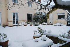 DSC_0711 (pnelepone) Tags: snow wintersday winterweather gthorkesley