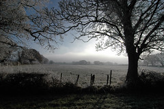 Frost and mist framed across the field (jimmedia) Tags: mist field frost framed across