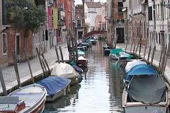 Venise 2010 (Cl. B.) Tags: venice veneza venise venecia venezia venedig  veneti venecija venetsia veneetsia     veneia   veneciji michel11