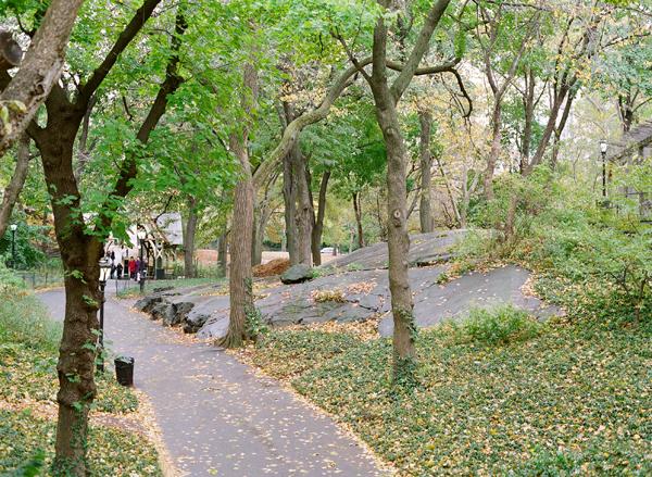 NYCblog20.jpg