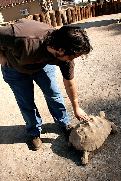 Scotty with a sulcata at the Wildlife World Zoo