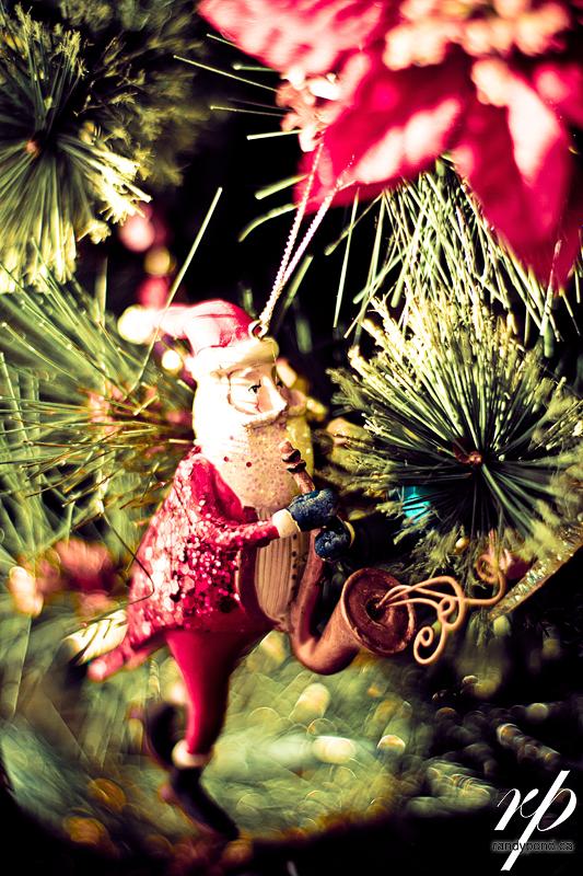 ~ 356/365 Christmas Holidays ~
