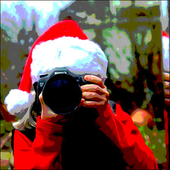 FRUITCAKE (1crzqbn~away) Tags: christmas camera selfportrait color canon reflections garden square mirror bokeh naturallight textures 7d santahat fruitcake redshirt selfie 359 hcs project365 supershot 1crzqbn clichesaturdays 6togowhoot