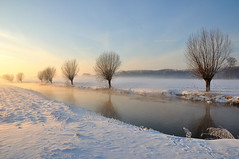 Brabants winterlandschap 2010 - Dutch winter landscape 2010 (RuudMorijn) Tags: morning blue winter light sky sun sunlight white mist snow cold holland reflection tree nature water netherlands beauty dutch weather mystery river season landscape outdoors freedom haze scenery europe frost december day view bright sneeuw seasonal perspective january large nederland freeze backgrounds environment temperature gemeente nederlands zon willows blauwe tranquil hemel hollands 2010 noordbrabant ijs zwaan covering northbrabant spiegelingen newvision reflecties drimmelen nonurban knotwilgen publieksprijs slicesoftime regionwide fleursetpaysages tplringexcellence laagstaande lelitedespaysages peregrino27newvision ruby20
