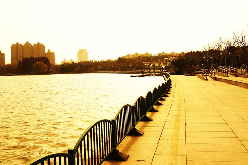 上海 世纪公园